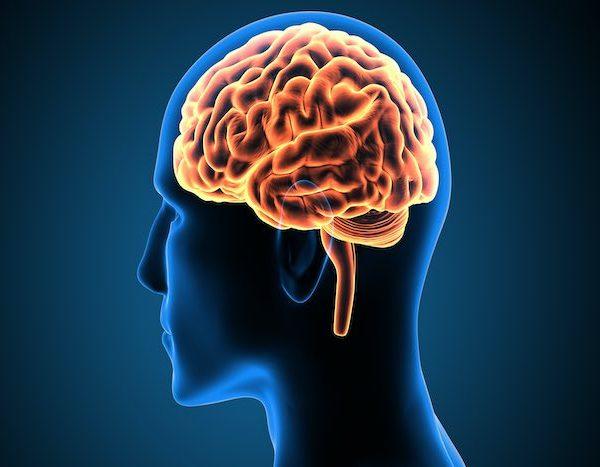 Understanding_neurlogy
